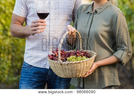 Two young happy vintners holding a basket of grapes and a glass of wine in the grapes fields
