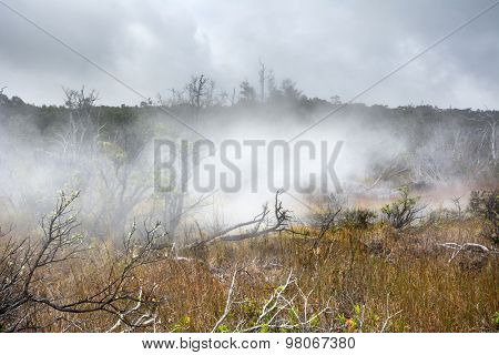 Natural steam rising from volcanic steam vents in the earth at Volcano National Park, Kilauea Hawaii.