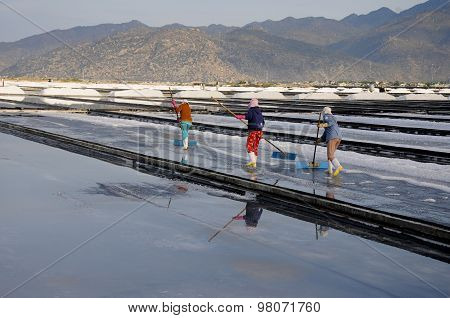Salk workers work in salt field in Vietnam