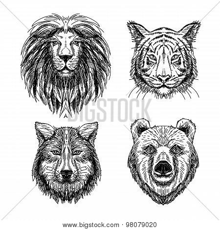 Vector set of hand drawn animal. Sketch illustrations.