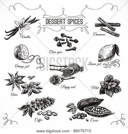 Vector hand drawn set with Dessert Spices.