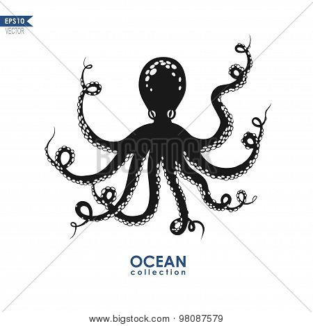 vector octopus isolated on white