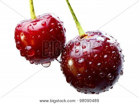 Sweet Cherry With Water Drops