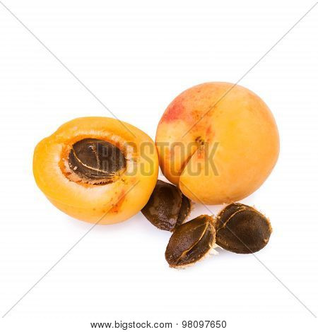 Apricot and half of fruit with fruits core