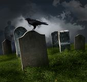 image of raven  - Cemetery with old gravestones and black raven - JPG