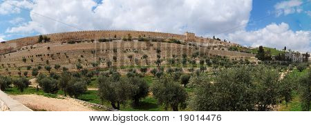 Panorama of Kidron Valley and the Temple Mount in Jerusalem