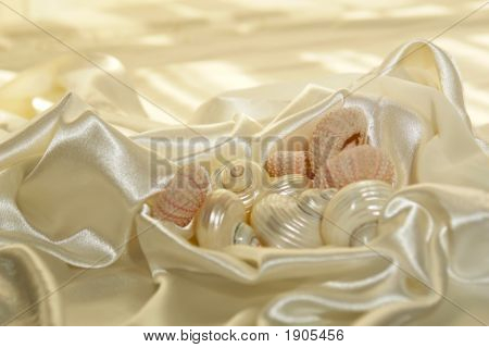 Satin Sea Shells