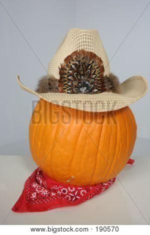 Get Along Little Pumpkin