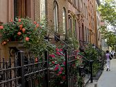 stock photo of brownstone  - A nice New York City neighborhood of well kept brownstone homes - JPG