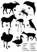 stock photo of eland  - Nine detailed vector silhouettes of various wild animals - JPG