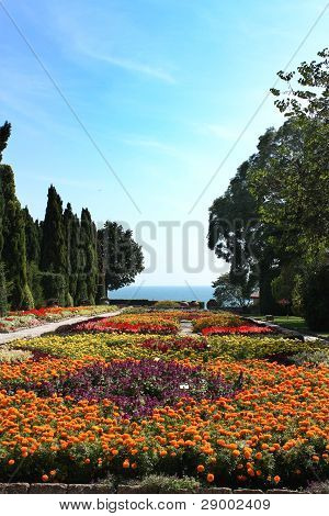 Botanic Garden With Flowers And Sea