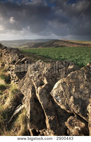 Dry Stone Wall View