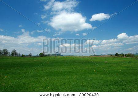Springtime green landscape