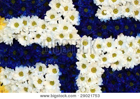 Abstract background made from white and blue flowers