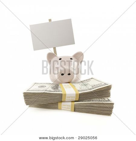 Pink Piggy Bank with Stacks of Hundreds of Dollars and Blank Sign Isolated on a White Background.