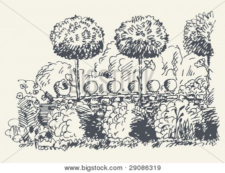 jardim esboçado