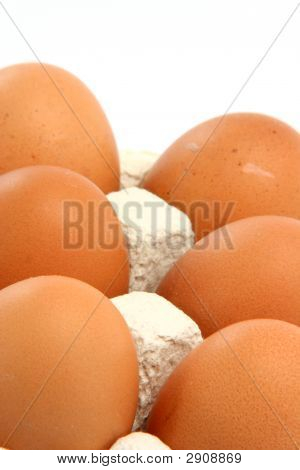 Eggs Vertical