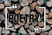 Writing Note Showing Poetry. Business Photo Showcasing Literary Work Expression Of Feelings Ideas Wi poster