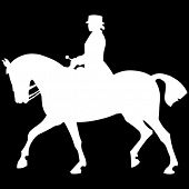 picture of horse riding  - horse rider - JPG