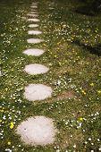 Stone Walkway. Garden Path Walkway On Green Grass Turf poster