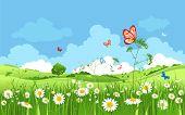 Summer Or Spring Landscape For Design Banner, Ticket, Leaflet, Card, Poster And So On. Green Grass,  poster