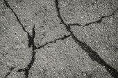 Old Road Background Surface Of Gray Cracked Asphalt Texture Closeup. Old Cracked Asphalt. Grunge Bac poster