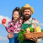Farmer Family Homegrown Harvest. Father And Daughter Hold Basket Harvest Vegetables. Gardening And H poster