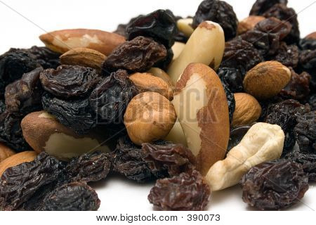 Trail Mix (close Front View)