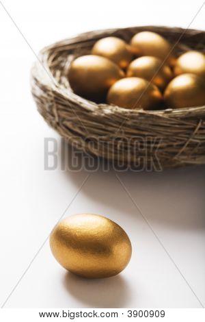 Huevos de oro en el nido