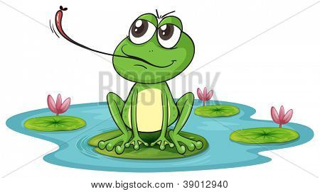 illustration of a frog on a white background