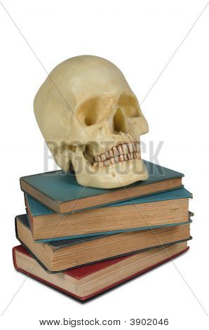 Human Skull On Books