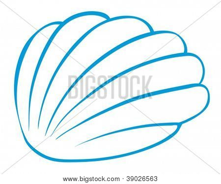 illustration of a cockleshell on a white background