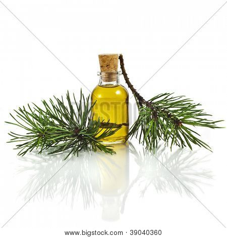 Bottle of fir tree essential oil isolated on white background close up
