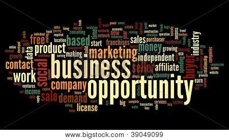 Business opportunity concept in word tag cloud on black background