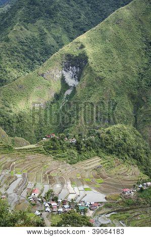 Batad Reis Terrassen, Luzon, Philippinen