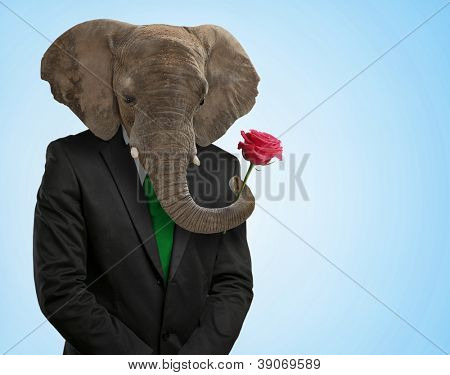 Portrait Of Man With Animal Head On Blue Background