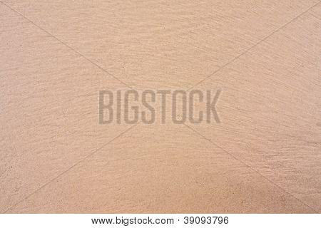 Sand Beach Texture Rough