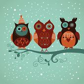 stock photo of laughable  - Winter owls - JPG