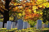 image of arlington cemetery  - Arlington National Cemetery near to Washington DC - JPG