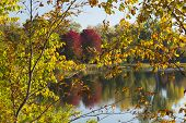 foto of winona  - Fall color trees and a reflective lake - JPG
