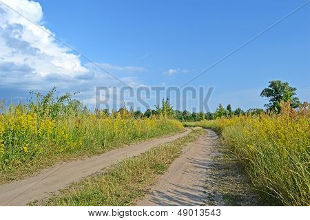 Ground Zigzag Road In The Meadow Before Thunderstorm, Blue Sky With White Clouds, Travel