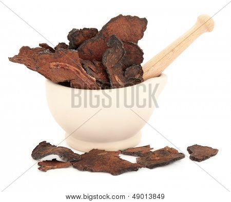 Chinese herbal medicine fleece flower root in a stone mortar with pestle over white background.