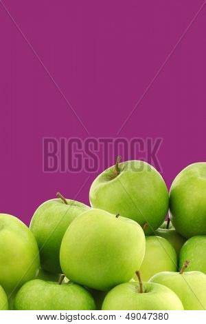 "freshly harvested ""Granny Smith"" apples on a purple background with copy space"