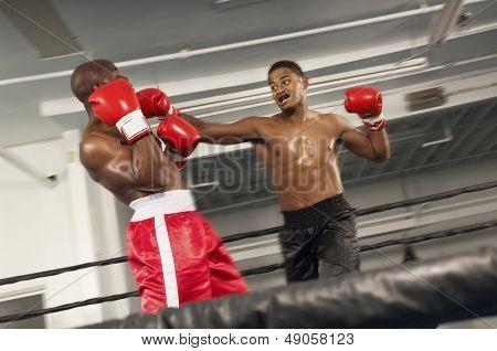 Dois boxeadores lutando no ringue