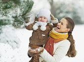 picture of stroll  - Happy mother and baby playing with snow on branch - JPG
