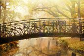 stock photo of old bridge  - Old bridge in autumn misty beauty park - JPG