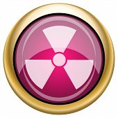 image of radium  - Shiny glossy icon with white design on magenta and gold background - JPG