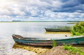 image of boggy  - boat in a high cane on the bank of lake - JPG