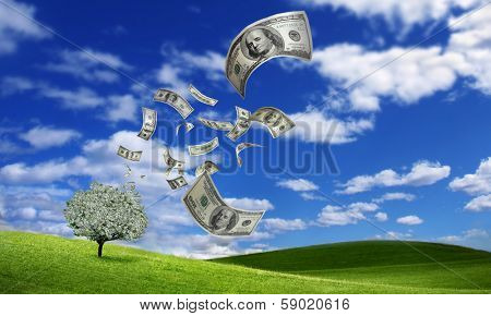 falling dollar bills from money tree