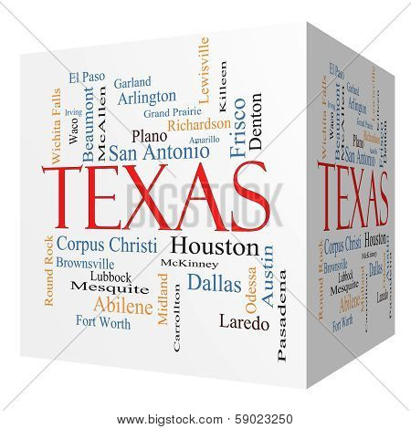 Texas State 3D Cube Word Cloud Concept